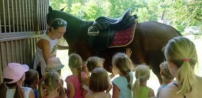 Animacija za otroke skupaj z jahanjem konjev