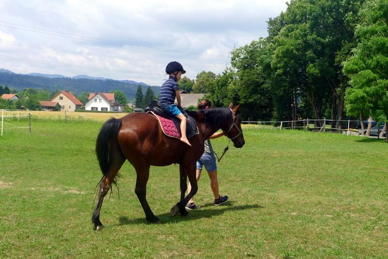 počitniško varstvo ljubljana jahanje konj